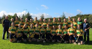 Faughs Celtic Senior 3 Team 2016 (Liam Costelloe)