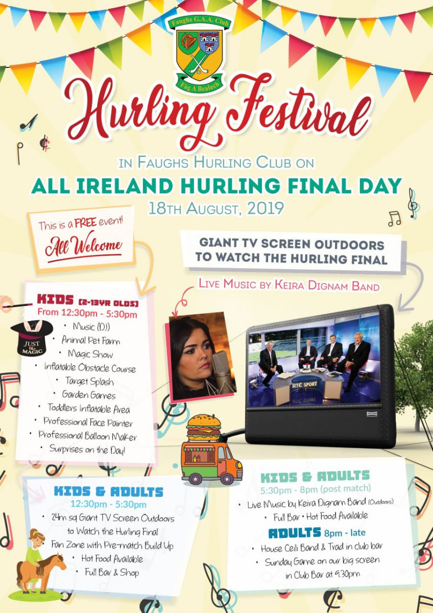 Hurling Festival Aug 18th 2019